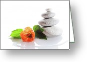 Balance Greeting Cards - Balanced Stones And Red Flower Greeting Card by Gunay Mutlu