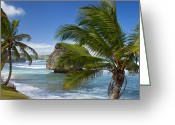 Atlantic Beaches Greeting Cards - Barbados Greeting Card by Brian Jannsen