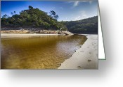 Tidal River Greeting Cards - Beach Erosion Greeting Card by Douglas Barnard