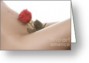 Piercing Greeting Cards - Beautiful Female Body Greeting Card by Oleksiy Maksymenko