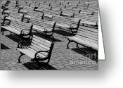 Park Benches Greeting Cards - Benches Greeting Card by Perry Webster