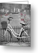 Trees Photograph Greeting Cards - Bicycle and Flowers Greeting Card by Sophie Vigneault