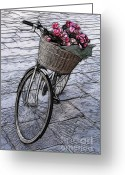 Bicycle Art Greeting Cards - Bicycle In Lucca Italy Greeting Card by Bob Christopher