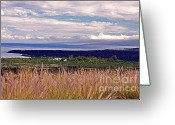 Island Photos Greeting Cards - Big Island Landscape 1 Greeting Card by Bette Phelan