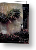 Garden Pots Greeting Cards - Black and White Cat Greeting Card by Karen Lewis