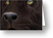 Black Leopard Greeting Cards - Black Leopard Greeting Card by Jurek Zamoyski