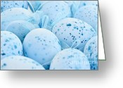 Ribbons Greeting Cards - Blue Easter eggs Greeting Card by Elena Elisseeva