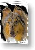 Pure Digital Art Greeting Cards - Blue Sable Standard Collie Greeting Card by Larry Linton