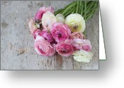 Buttercup Greeting Cards - Bouquet Of Pink Ranunculus Greeting Card by Elin Enger