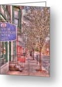 Bradford Greeting Cards - Bradford Pears in Gettysburg Greeting Card by David Bearden