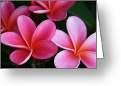 Hawaiian Art Digital Art Greeting Cards - Breathe Gently Greeting Card by Sharon Mau