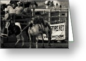 Bronc Greeting Cards - Bronc Riding Greeting Card by Cynthia Dickinson