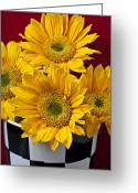 Still Life Photo Greeting Cards - Bunch of Sunflowers Greeting Card by Garry Gay
