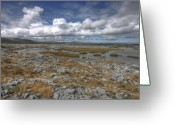 Barren Limestone Greeting Cards - Burren scenery Greeting Card by John Quinn