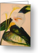 Canna Greeting Cards - Canna Lily Greeting Card by Lynn Beazley Blair