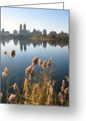 Park Greeting Cards - Central Park Greeting Card by Yannick Guerin