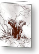 Elephant Watercolor Greeting Cards - Charge Greeting Card by Roger Bonnick