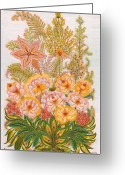 Floral Drawings Greeting Cards - Charming Dreams of my Childhood Greeting Card by Marfa Tymchenko
