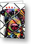 Pop Art Mixed Media Greeting Cards - Choose Adoption Pit Bull Greeting Card by Dean Russo