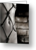 Grungy Greeting Cards - Closeup of a Stomach with Decorative Rope Bondage Shibari Greeting Card by Oleksiy Maksymenko