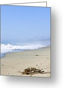 Foam Greeting Cards - Coast of Pacific ocean in Canada Greeting Card by Elena Elisseeva
