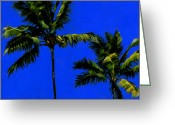 Coconut Greeting Cards - Coconut Palms 3 Greeting Card by Douglas Simonson