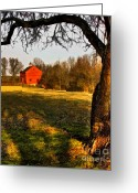 Digitally Enhanced Greeting Cards - Country Life Greeting Card by Susan Candelario