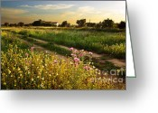 Ruin Greeting Cards - Countryside Landscape Greeting Card by Carlos Caetano