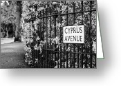 Northern Ireland Greeting Cards - Cyprus Avenue Belfast as made famous by the Van Morrison song Greeting Card by Joe Fox