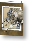Blue Jay Greeting Cards - Dark Blue Window of Opportunity Greeting Card by Jim Turner