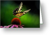 Cone Flower Greeting Cards - Dining Alone Greeting Card by Lois Bryan