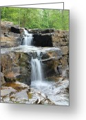 Dismal Greeting Cards - Dismal Falls II Greeting Card by Laurinda Bowling