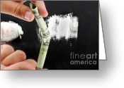 Cocaine Greeting Cards - Drug Abuse Greeting Card by Photo Researchers, Inc.