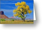 Autumn In The Country Greeting Cards - Dug Out Ranch Greeting Card by Juls Adams