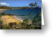 Puerto Rico Greeting Cards - El Convento Beach Greeting Card by Thomas R Fletcher