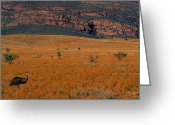 Emu Greeting Cards - Emu Dreaming Greeting Card by Bruce J Robinson