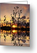 Sunset Photography Greeting Cards - Evening Greeting Card by Kristin Kreet
