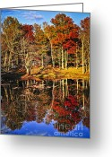 Reflect Greeting Cards - Fall forest reflections Greeting Card by Elena Elisseeva