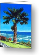 Seashore Greeting Cards - Fan Palm - Diamond Head Greeting Card by Douglas Simonson