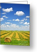 Bales Greeting Cards - Farm field at harvest in Saskatchewan Greeting Card by Elena Elisseeva