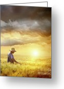 Farm Greeting Cards - Farmer checking his crop of wheat  Greeting Card by Sandra Cunningham