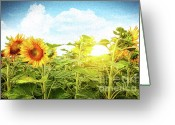 Pollen Greeting Cards - Field of colorful sunflowers and blue sky  Greeting Card by Sandra Cunningham
