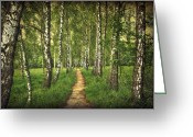 Walk Way Photo Greeting Cards - Find Your Way Back Home Greeting Card by Evelina Kremsdorf
