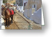 Thira Photo Greeting Cards - Fira - Santorini Greeting Card by Joana Kruse