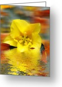 Flood Greeting Cards - Floral Fractals and Floods Digital Art Greeting Card by David French