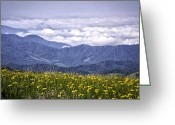 Mountains Photographs Greeting Cards - Flowers and Mountains...Warm and Cool Greeting Card by Rob Travis