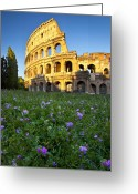 Martyr Photo Greeting Cards - Flowers at the Coliseum Greeting Card by Brian Jannsen