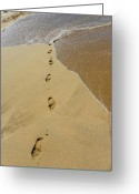 Sand Beaches Greeting Cards - Footprints in the Sand Greeting Card by Elizabeth Hoskinson