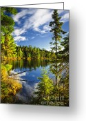 Reflect Greeting Cards - Forest and sky reflecting in lake Greeting Card by Elena Elisseeva