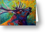Western Trees Greeting Cards - Forest Echo - Bull Elk Greeting Card by Marion Rose